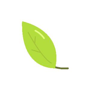 Green Shipping Materials